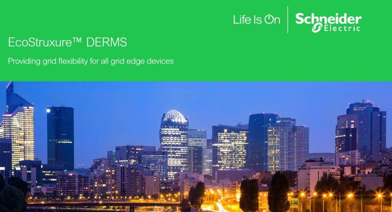Schneider Electric: flessibilità della rete elettrica con EcoStruxure
