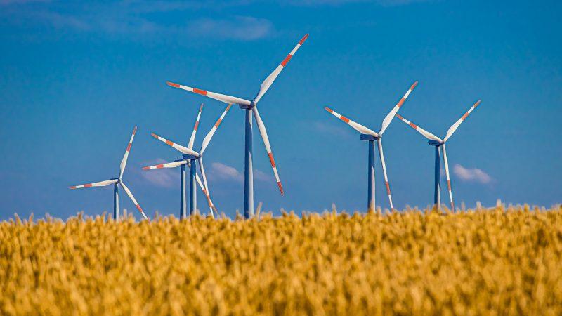 Fotovoltaico eolico e idroelettrico registrano una forte crescita fino ad agosto